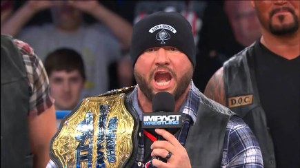 Bully Ray (Wrestler of the Year, 2011)
