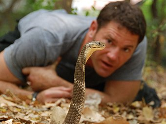 Steve Backshall (TV Host, 2011)