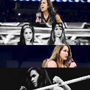 AJ Lee vs. The Bella Twins