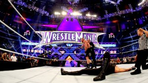 Lesnar def. Undertaker at Mania 30