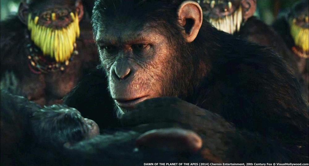 Dawn of Apes - screenplay