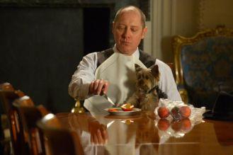 Red Reddington. The Blacklist. NBC.