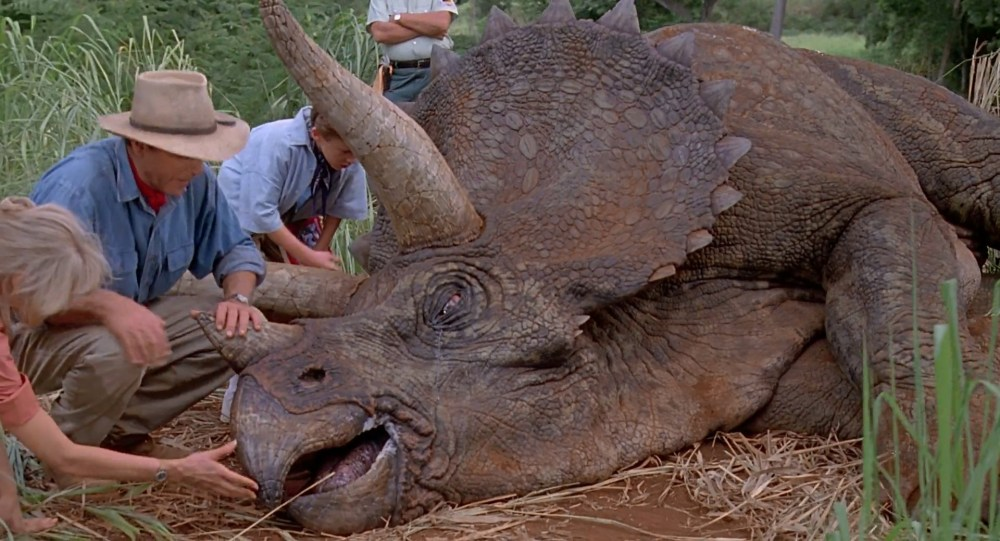 6 - Triceratops