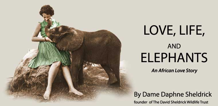 Love Life and Elephants